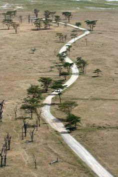 Kenya East African Rift, East African Community, Roads And Streets, Open Roads, Kenya Travel, Kenya Africa, African Nations, The Beautiful Country, Walkways