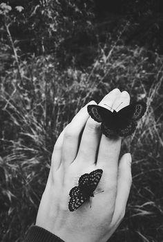 Mariposas X 8 en Blanco y Negro-Ideal para el color con Polvos de mica