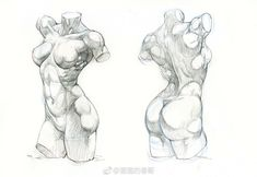 Exceptional Drawing The Human Figure Ideas. Staggering Drawing The Human Figure Ideas. Human Anatomy Drawing, Drawing Female Body, Human Figure Drawing, Figure Sketching, Figure Drawing Reference, Art Reference Poses, Female Body Art, Anatomy Sketches, Body Sketches