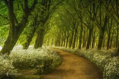 A Seat not Taken by Lars van de Goor | 500px: Popular photos | Bloglovin'