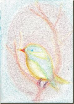 Coloring with Stockmar Block Crayons Crayon Drawings, Chalk Drawings, Bird Drawings, Animal Drawings, Painting Lessons, Drawing Lessons, Art Lessons, Painting & Drawing, Crayon Book