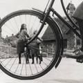 Fox Photos & uncredited photographer - Schoolchildren at Chew Magna Council School, London, 1935 & via last-picture-show Framing Photography, City Photography, Video Photography, Vintage Photography, Edinburgh Photography, Photography Software, Photography Hacks, Photography Lighting, Cycling For Beginners