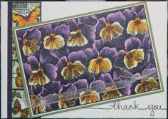 Darkroom Door - Pansies Photo Stamp, Garden Greetings and String Sentiments
