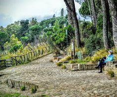 """Enjoying Peacefulness""  #montemario #rome #roma #italy #italia #repostromanticitaly #lazio #myrome #amazing_italy ##wp #photobydperry #europe #europa #noidiroma #landscape #view #beautiful #vista"