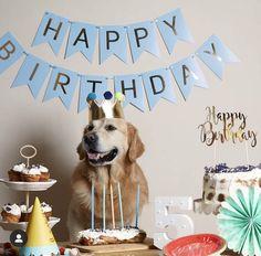 Cool Stuff, Birthday, Party, Home Decor, Birthdays, Decoration Home, Room Decor, Parties, Home Interior Design