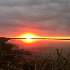 South Louisiana Goose Hunt Sunrise