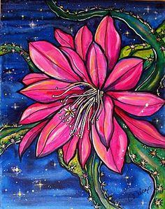 Heliocereus – Colleen Wilcox Art