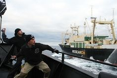 Stink bomb a Japanese whaling vessel. Butyric acid = rancid butter fluid.