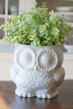 OH.  MY.  I am totttttaaaallly in love with this.  And the awesome thing?  I totally have this owl...actually I have a full set of them.  Just need to pull out the spray paint!