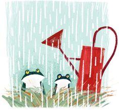 Two Frogs in Rain