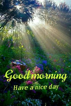 Gud Morning Images, Good Morning Flowers Pictures, Good Morning Friends Images, Latest Good Morning Images, Hindi Good Morning Quotes, Good Morning Inspirational Quotes, Good Morning World, Good Morning Happy, Morning Greetings Quotes