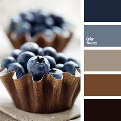 Fresh blueberries in brown baskets. Solid dark blue, almost black and calm brown color. Color of blueberry is a good solution for decoration. It attracts t
