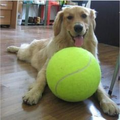 1PC 24CM Big Inflatable Tennis Ball Giant Pet Toy Tennis Ball Dog Chew Toy Signature Mega Jumbo Kids Toy Ball Outdoor Supplies (