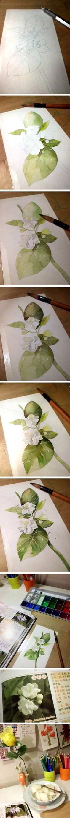 Step by step watercolour of jasmine: