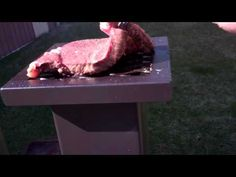 Cooking Steak on my New Deadwood Stove!! Wow! Does this Steak taste Awes...