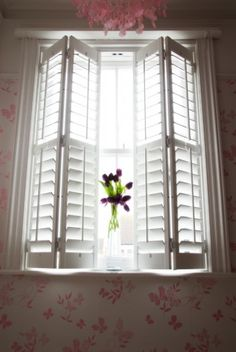 shutterly fabulous putney window shutters on box bay around the
