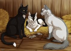 A journey through the fandoms: Warrior Cats by Vialir Barley, Ravenpaw and Brometail. Warrior Cats Comics, Warrior Cat Memes, Warrior Cats Fan Art, Warrior Cats Series, Warrior Cats Books, Warrior Cat Drawings, Cat Comics, Herding Cats, Rabe