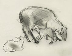 Ewe with two young lambs - 20 April 2013 by Julian Williams Farm Yard, Illusions, Sheep, Goats, Cow, Sketches, Trifles, Neuroscience, Lambs