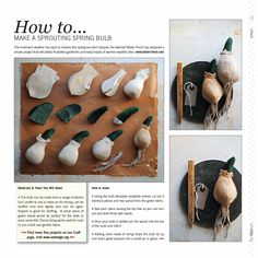 pattern instructions for Mr. Finch Bulb... don't forget to find the actual pattern on my board as well.