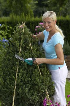 How to trim decorative shrubs by giving them special shapes – Practical ideas Boxwood Garden, Topiary Garden, Topiary Trees, Trees And Shrubs, Trees To Plant, How To Trim Bushes, Diy Academy, Outdoor Topiary, Cinder Block Garden