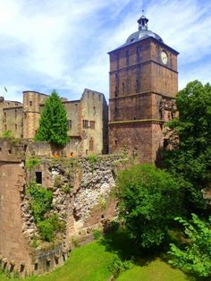 Touring the area around historic Heidelberg Castle