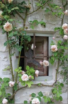 This is just plain Beautiful.  The grate on the window, the wood color and grain, the pale pink of the roses against it all.  I LOVE this and I want it!