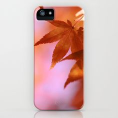 Fall Symphony iPhone Case by Shilpa - $35.00
