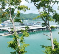 Andersonville, TN — Yacht Club Condos on Norris Lake offers an affordable waterfront living experience that you and your family will love! Norris Lake Tennessee, Tennessee Vacation, Boat Dock, Yacht Club, The Good Place, River, Condos, Places, Outdoor Decor
