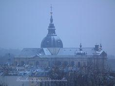 Cathédrale Saint-Louis Versailles