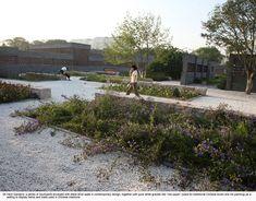 081-05-herb-garden « Landscape Architecture Works | Landezine