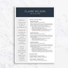 modern day resume minimalist