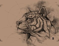 Wolf tattoo by Victor Montaghini. Blackwork animal tattoos are classy & mysterious. They stand out due to their bold lines and complex patterns and they impose respect and admiration. Tiger Sketch, Tiger Drawing, Tiger Art, Skull Sketch, Animal Sketches, Animal Drawings, Cute Drawings, Pencil Drawings, Tattoo Sketches