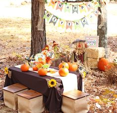 pumpkin birthday party | ... party guests and let them paint pumpkins for an…
