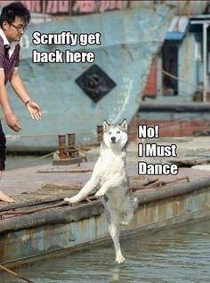 Must Dance Meme | Slapcaption.com