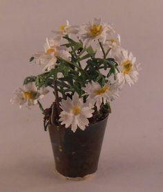 Daisy's in Bucket 14-4 by Marie Petrik