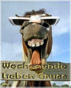 lustiges Bild 'Ich gucke.jpg'- Eine von 21852 Dateien in der Kategorie 'witzige Bilder' auf FUNPOT.