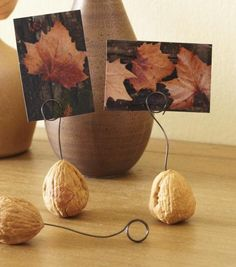 Cute idea, but rather than bothering with a walnut and drill, how about something you can poke ... like a mini pumpkin or an apple?  Stick the wire in and add a product postcard or photo.