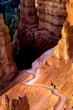 Hiking here will remind you of how small you are- if you aren't too busy marveling at the gorgeous scenery! Bryce Canyon National Park