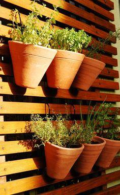 Hortinha de temperos no painel vertical   Brincando de Casinha