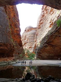 Inside the natural amphitheatre of Cathedral Gorge in the Bungle Bungles, Western Australia.