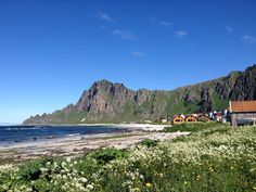Norske reiseblogger: Andøya - en vakker perle i nord