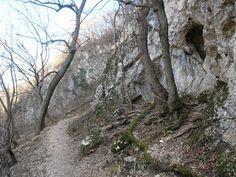 Erdőkerülők: Az alvó lepkék barlangjában; a Legény-barlang és a Leány-barlang mélyén a Csévi-szirteknél