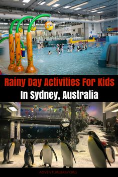 20 Rainy Day Activities For Kids in Sydney Travel With Kids, Family Travel, Group Travel, Australia Travel, Sydney Australia, Western Australia, Sydney For Kids, Places To Travel, Places To See