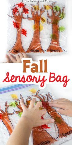 Fall Sensory Bag - Munchkins and Moms Fine Motor Activities For Kids, Autumn Activities For Kids, Art Therapy Activities, Sensory Activities, Preschool Activities, Crafts For Kids, Sensory Play, Therapy Ideas, Nanny Activities