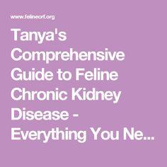 Cat Food For Kidney Disease Tanya S