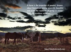 The horse is the projection of people