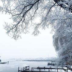 Traum in weiß  #pic #pinterest #winter