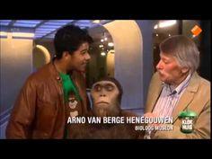Het Klokhuis - Evolutie van de mens deel 1 - YouTube