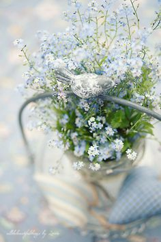 *        forget-me-nots