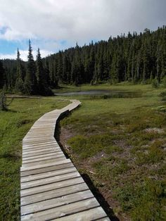 Paradise Meadows Central Island, Vancouver Island, Paradise, Sidewalk, Hiking, Ocean, Adventure, Medium, Walks
